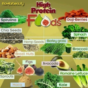 Plants with protein.