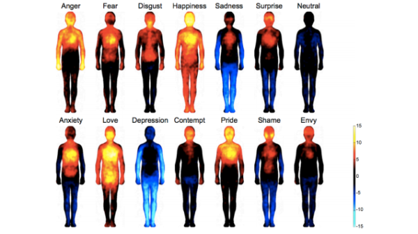 Emotions in body