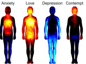 Emotions in Body