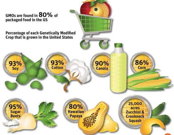 Percentage of crops grown in U.S. that are GMO