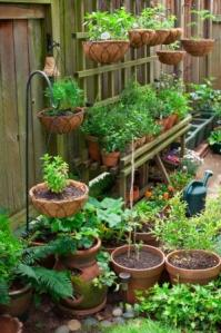 Patio container gardening